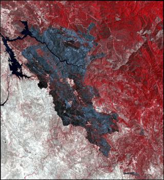 Figure 3 Detwiler Fire Spot 6 RGB False Color.png
